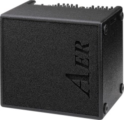 AER DOMINO-2 100W Acoustic Guitar Combo Amp