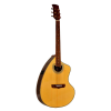 Giannini  Craviola 6 String Acoustic-Electric Guitar GSCRA-PRO-CEQ-F