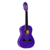 "Giannini  Study Series 34"" Classical Guitar (GN-R)"