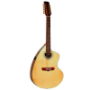 Giannini  12-String Craviola Acoustic-Electric Steel String Guitar with Case GSCRAPRO12-CEQF