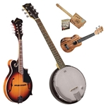 Other Fretted Instruments
