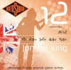 Rotosound JK12 .012 | .054 Jumbo King Acoustic Guitar Strings