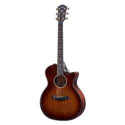 Taylor Guitars  300 Series Builder's Edition Grand Auditorium Steel String Acoustic Electric Guitar 324CE-BUILDER